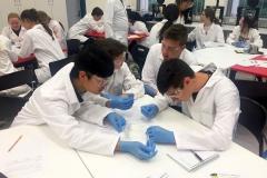 Lab visit - testing