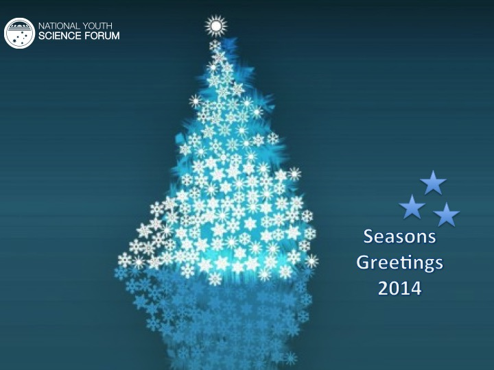 Season's Greetings from all at the NYSF - content image