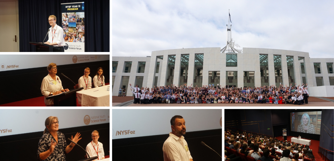 Week 1, Session A of NYSF 2019 – What a Week! - content image